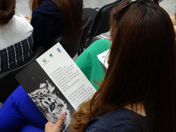 Генетики Узбекистана начнут использовать ДНК-анализ для идентификации и оценки численности снежных барсов