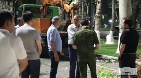 Хоким поймал «лесорубов», пытавшихся спилить ночью 20 деревьев напротив дворца «Туркистон» (видео)