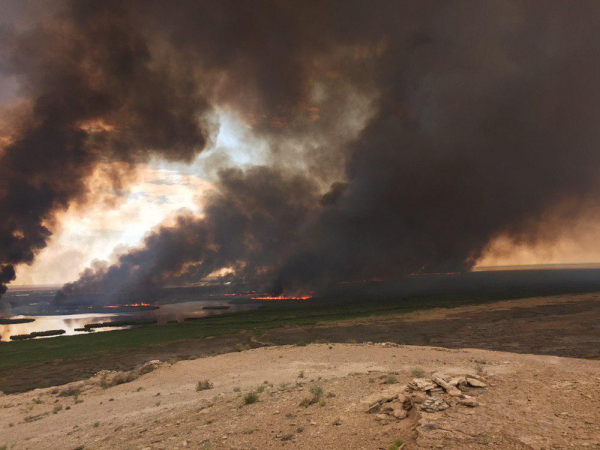 В Каракалпакстане горит знаменитое озеро Судочье (видео)