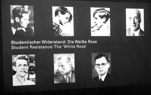 Молодогвардейцы Белой розы