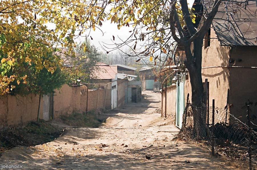 В Узбекистане начнут создаваться туристические махалли, кишлаки и аулы