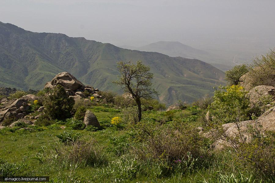 В горах Шахрисабза создадут горный парк стоимостью $2 млн