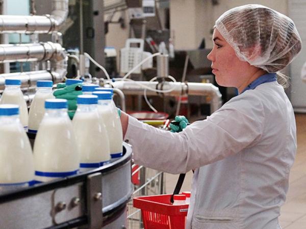 В Ташкентской области откроют молочно-товарный комплекс, работающий по белорусским технологиям