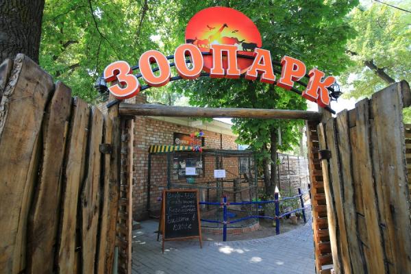 В парке имени Фурката в Ташкенте появится Бионический сад