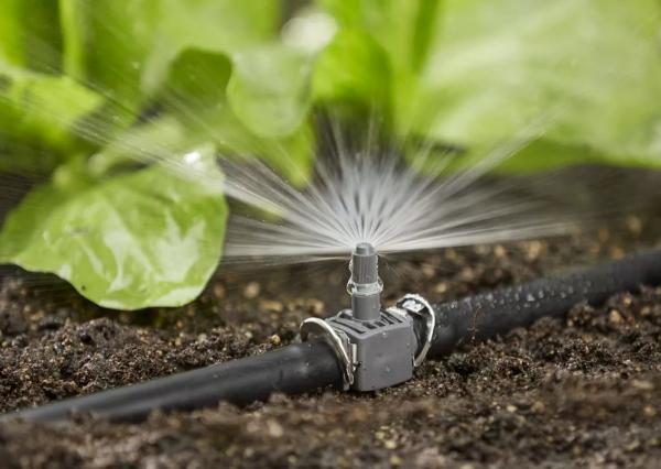 Государство возместит расходы фермерам, установившим на полях капельное и дождевое орошение