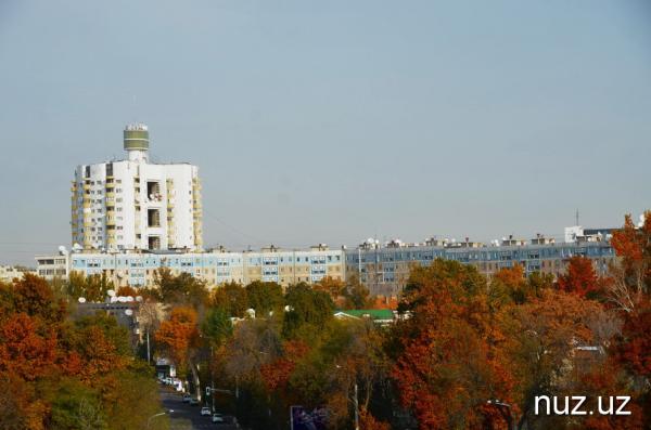 После резкого похолодания в Узбекистан снова придет тепло