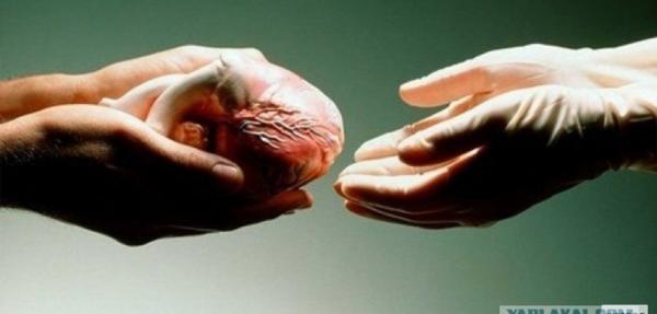 Яқин қариндошлар орасида буйрак, жигар бўлагини трансплантация қилишга рухсат этилади