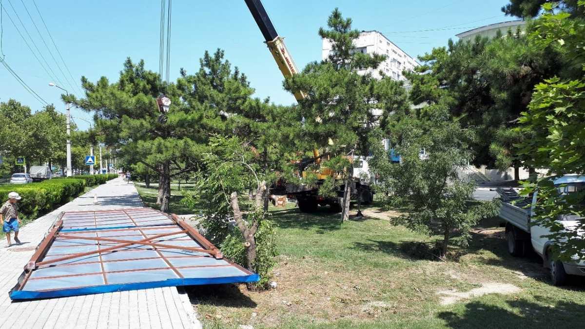 АКАУ выступила против обрезки деревьев возле билбордов