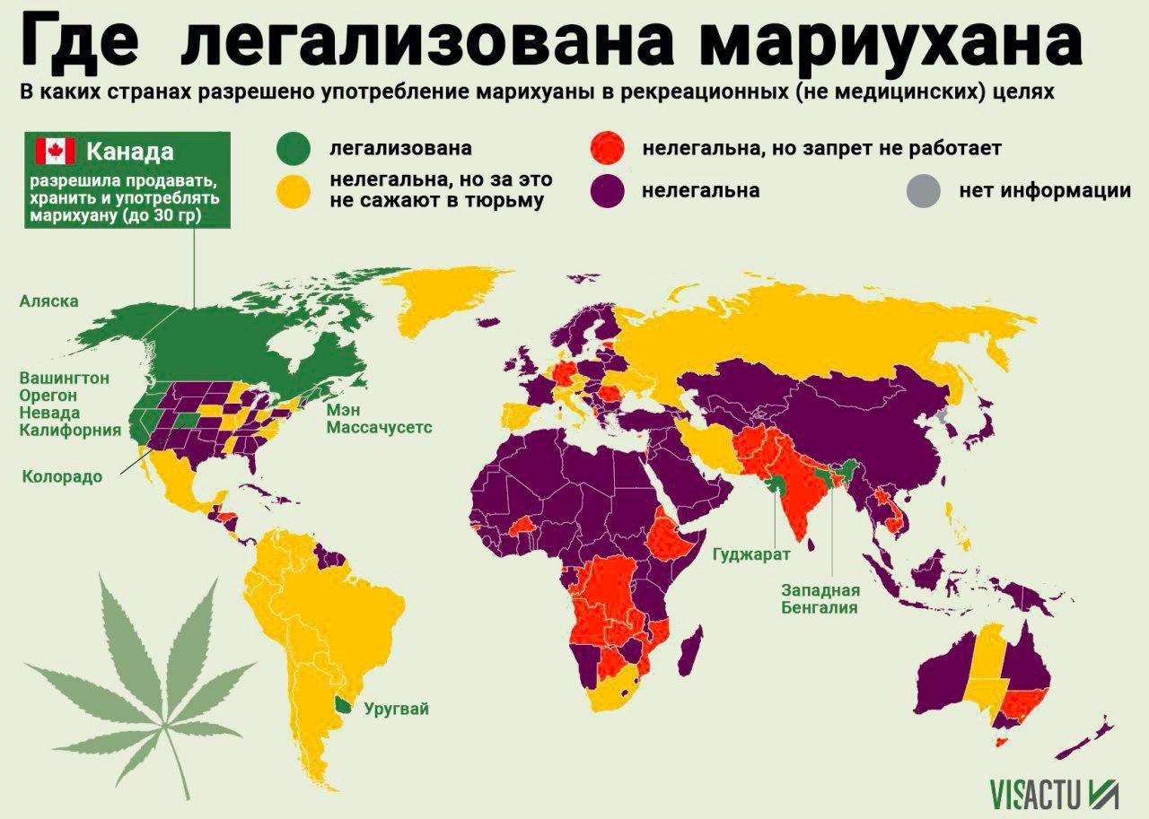 Странах в легально марихуана каких семян интернет канабиса магазины