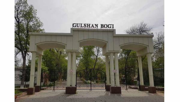В «заброшенном и неухоженном» парке «Гулшан» построят медицинскую клинику. Что станет с деревьями?