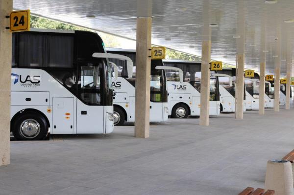 Регулярные автобусные рейсы из Ташкента в Москву будут запущены 19 декабря