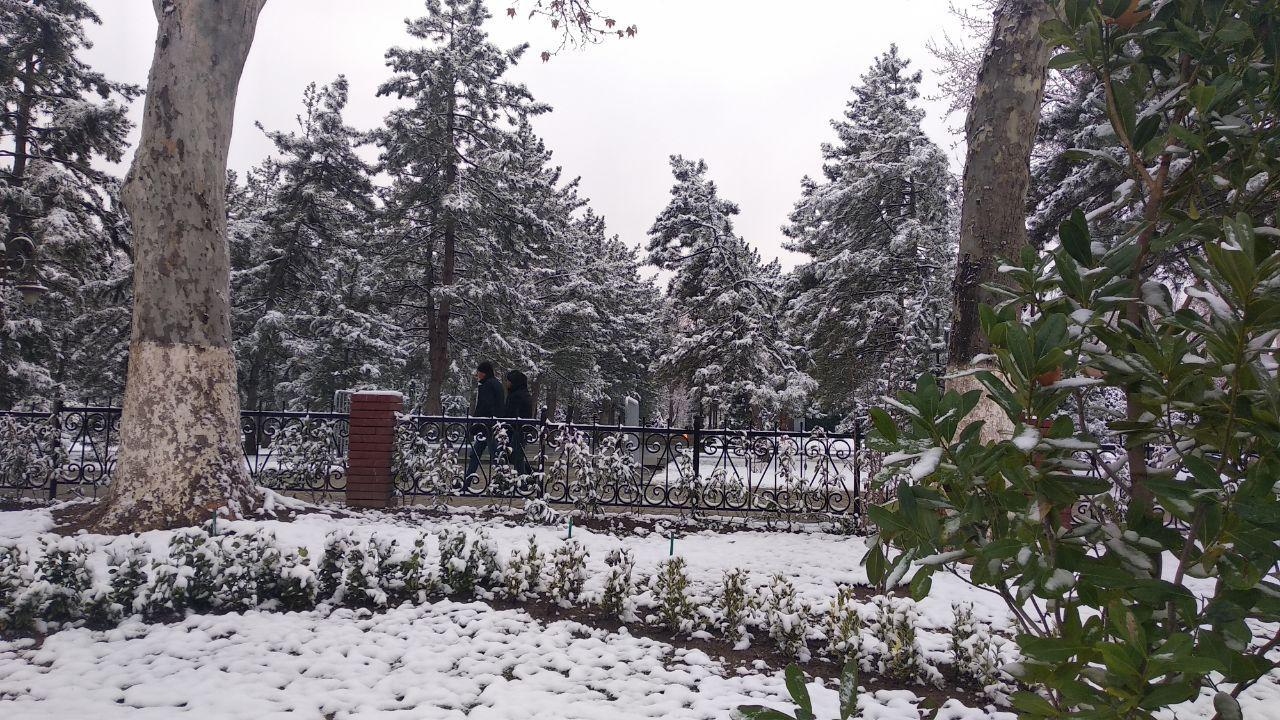 Синоптики вновь обещают узбекистанцам снег
