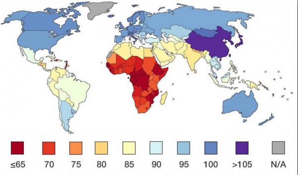 Средний IQ в странах мира