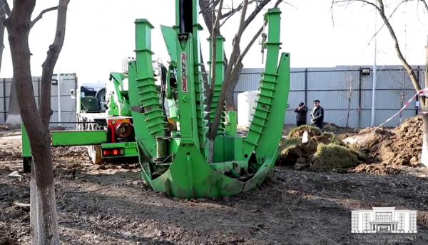 Что происходит в парке «Ашхабад»? Хокимият объяснил, что строительство ведется с сохранением деревьев (видео)