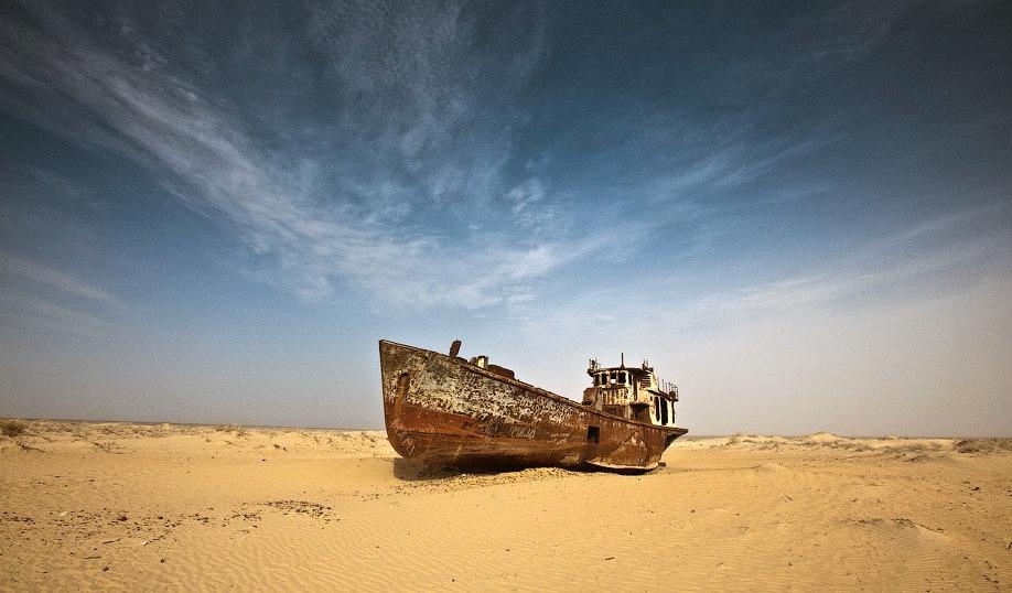 В Узбекистане будет реализован проект «Мой сад в Аральском море»