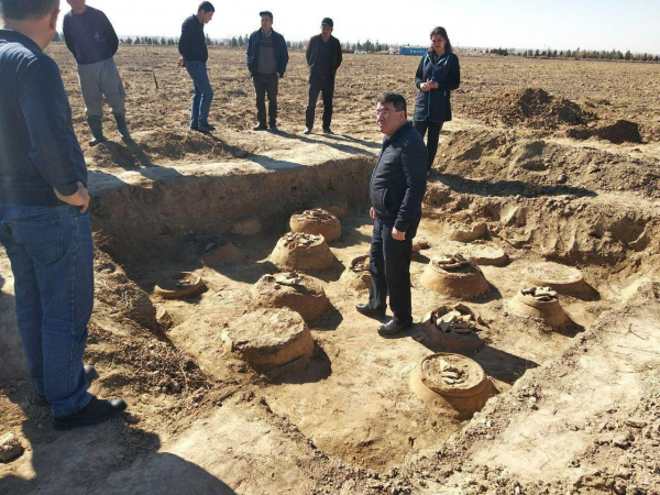 Фермер из Сурхандарьинской области нашел зернохранилище эпохи Кушанского царства (фото)