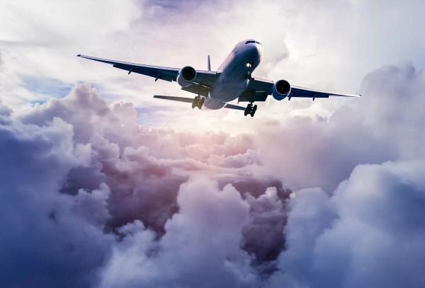 В соцсетях появились слухи, что узбекистанцев вывезут из Лондона на частных самолетах: МИД опровергает эти сообщения