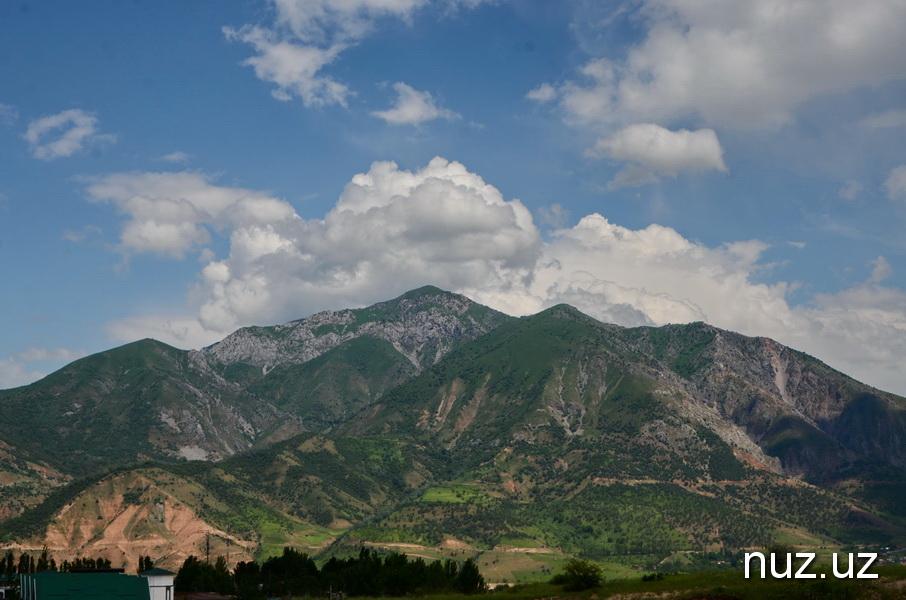 Горы на карантине: как течёт жизнь в 100 километрах от Ташкента