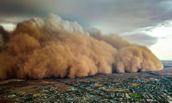 В «Узгидромете» пообещали, что пыльная буря в Туркменистане не захватит Узбекистан