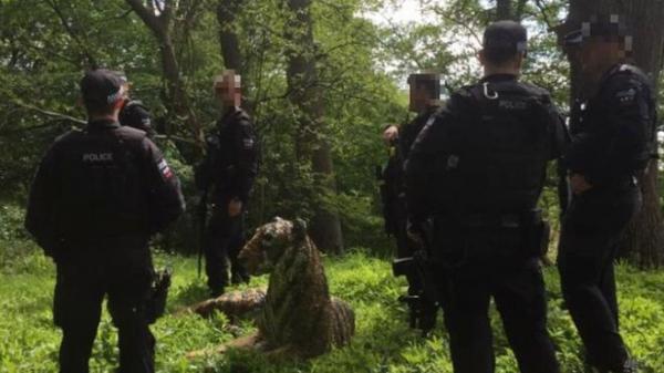 Британская полиция ловила тигра с оружием и вертолетом. Оказалось, что это скульптура